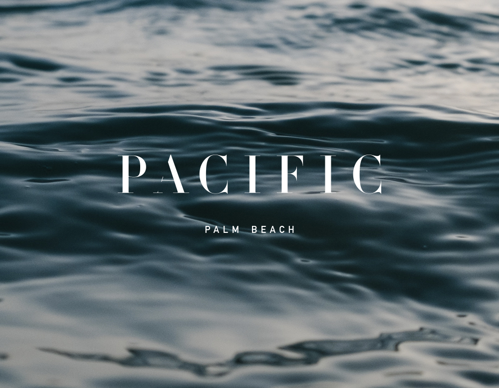 VanessaMacPhail-PacificPalmBeach-Logo1.jpg
