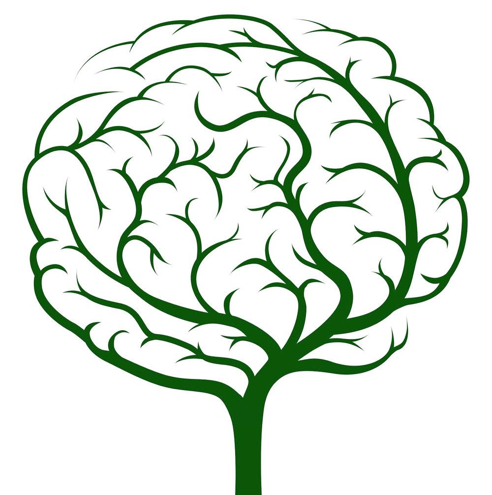Brain_Tree