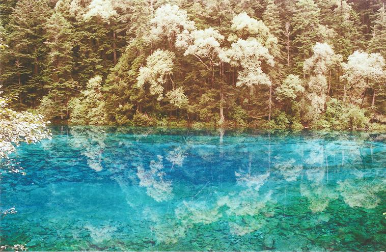 The Artists - Nicola Odemann