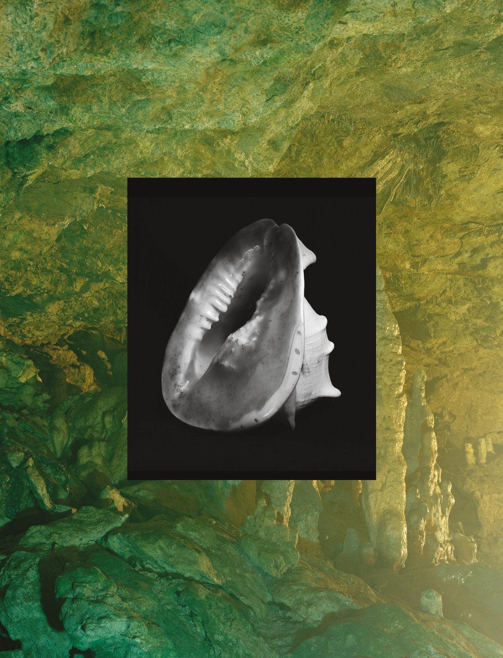 Esther-Teichmann-3.jpg