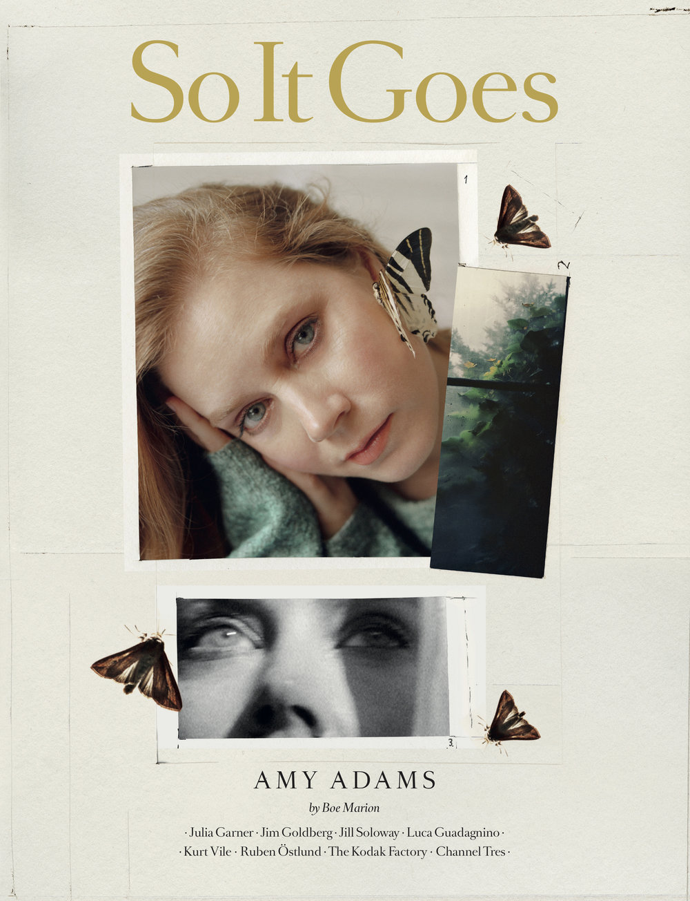 Amy Adams x So It Goes Cover.jpg