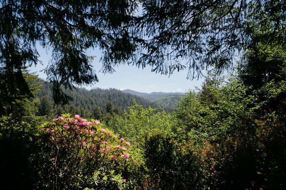 california_26.jpg