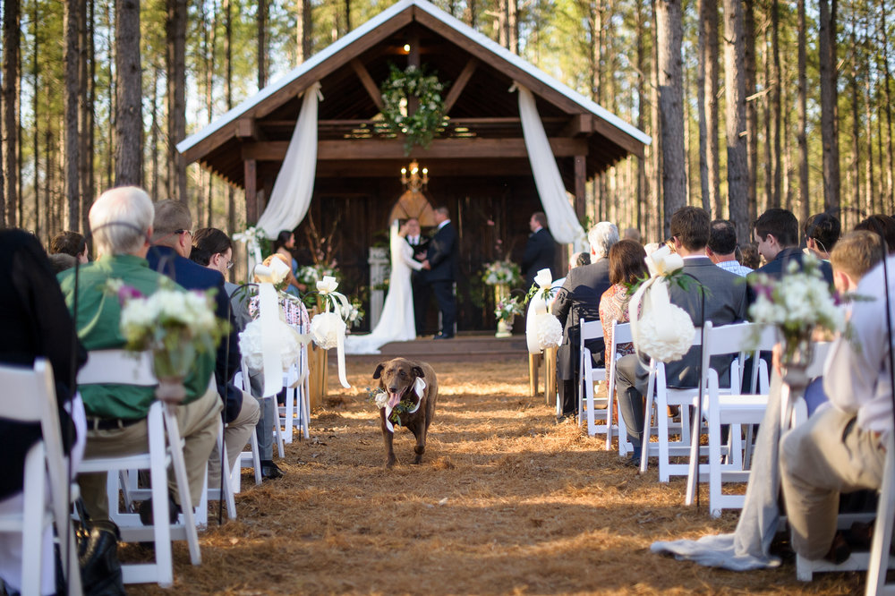 Outdoorwedding--8.JPG