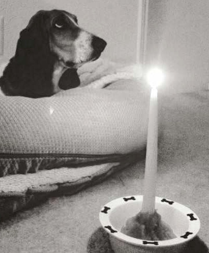black and white first birthday candle.jpg