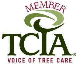 Member of TCIA