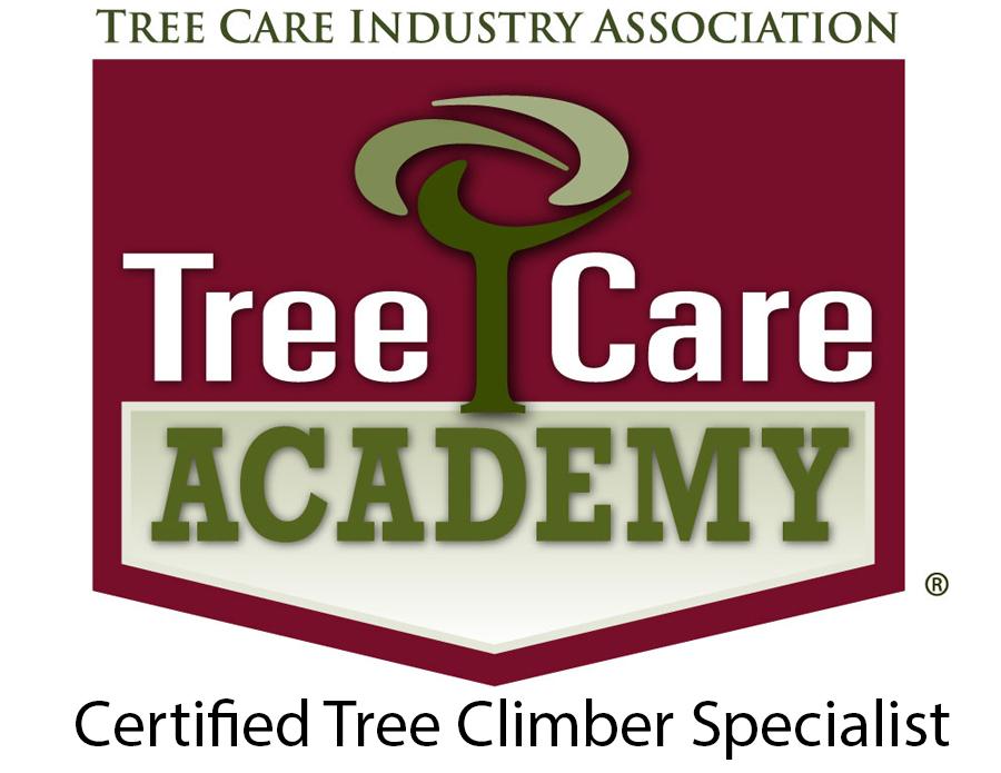 Certified Tree Climber Specialist