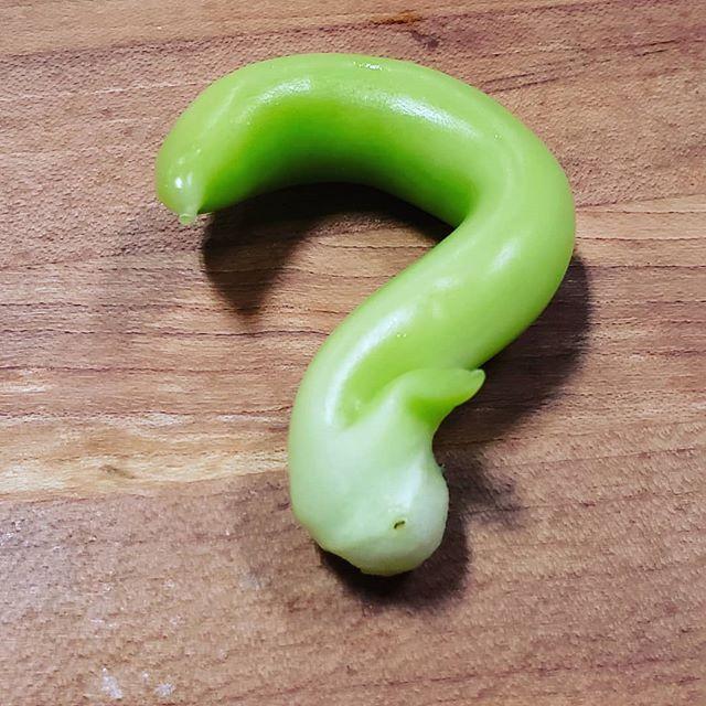 What am I? #kitchenshare #mysteryveggie