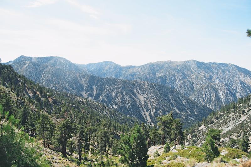 2014 07 26 Mt Baldy Hike 14
