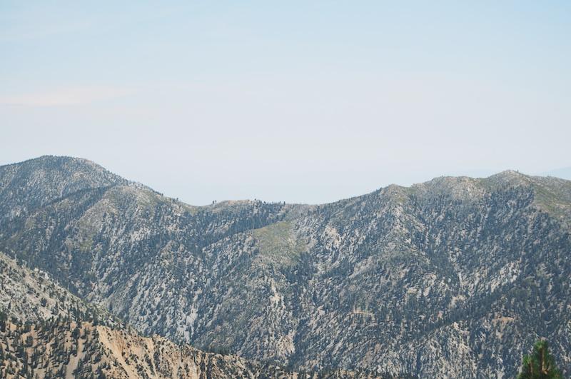 2014 07 26 Mt Baldy Hike 179