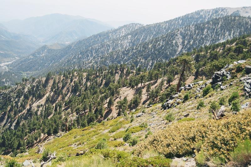 2014 07 26 Mt Baldy Hike 202