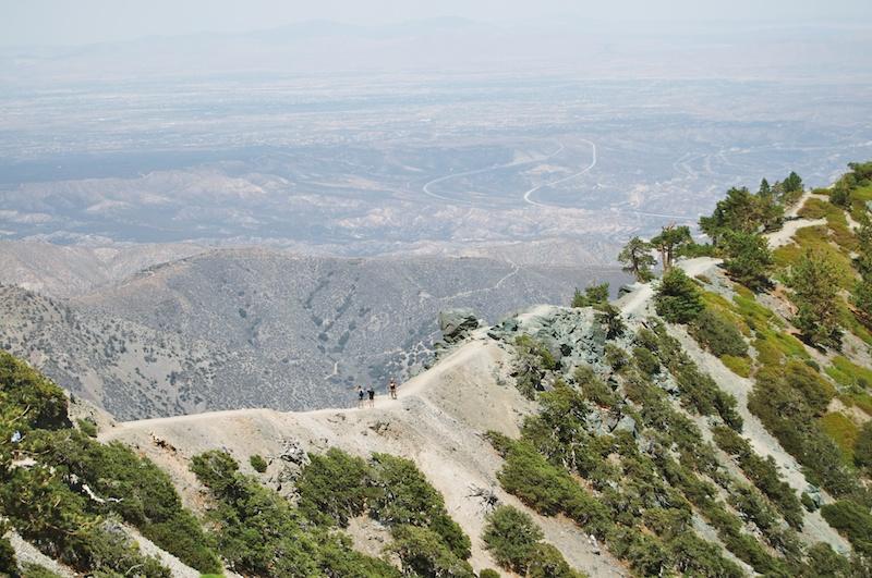 2014 07 26 Mt Baldy Hike 205