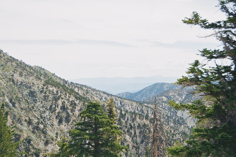2014 07 26 Mt Baldy Hike 26