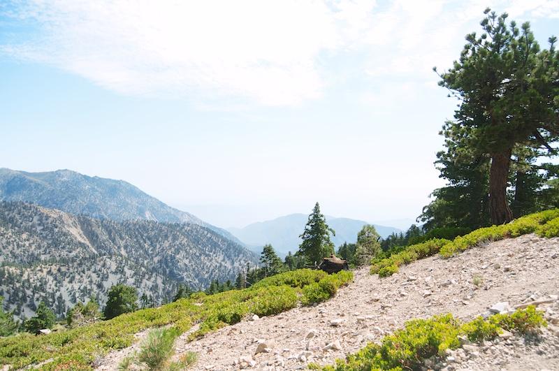 2014 07 26 Mt Baldy Hike 279