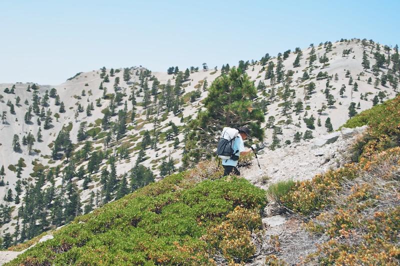 2014 07 26 Mt Baldy Hike 45