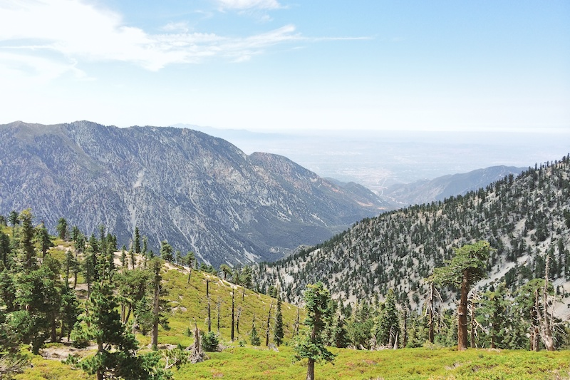 2014 07 26 Mt Baldy Hike (Iphone) 15