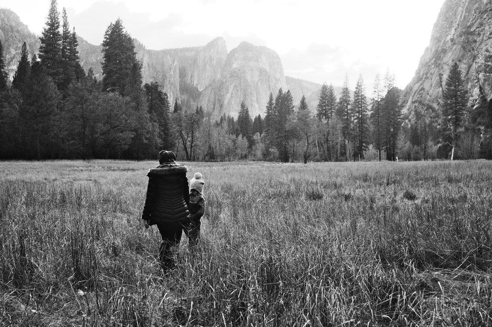 2017 11 10 Yosemite 66.jpg