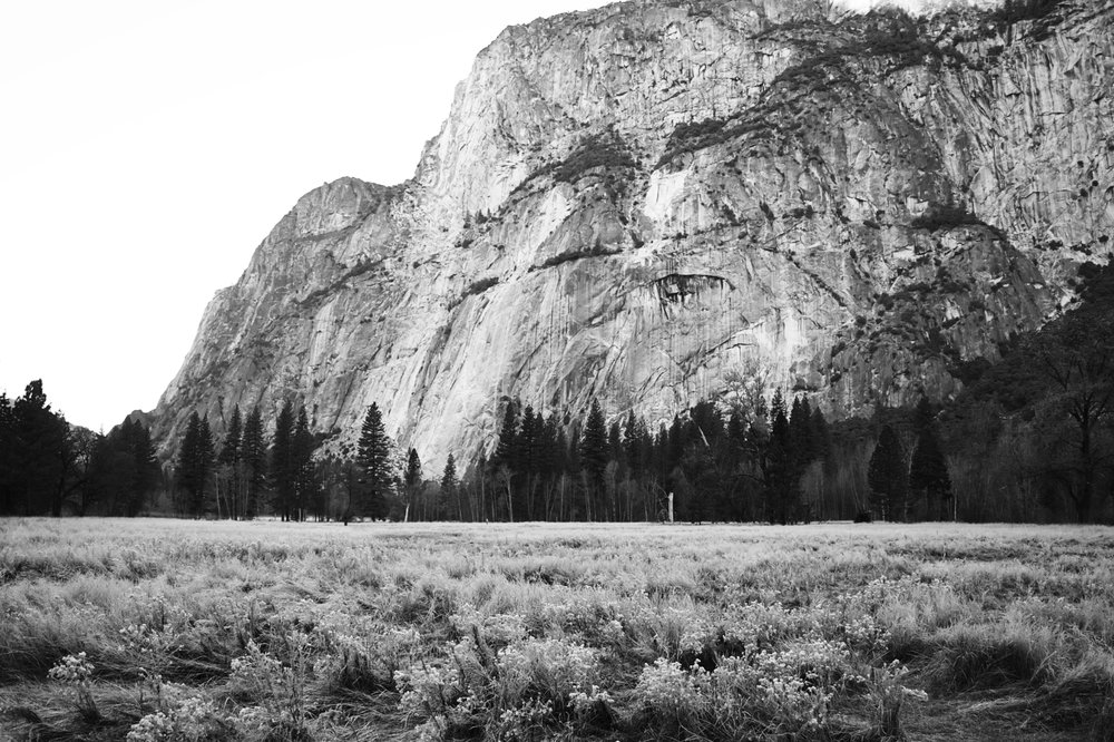 2017 11 10 Yosemite 147 - Version 2.jpg