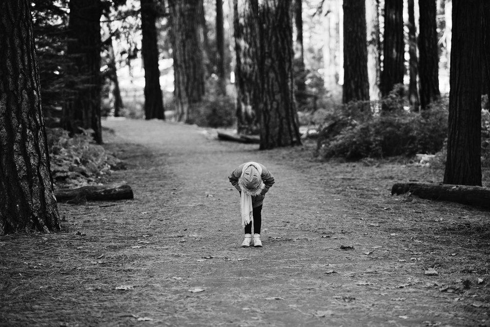 2017 11 10 Yosemite 451.jpg