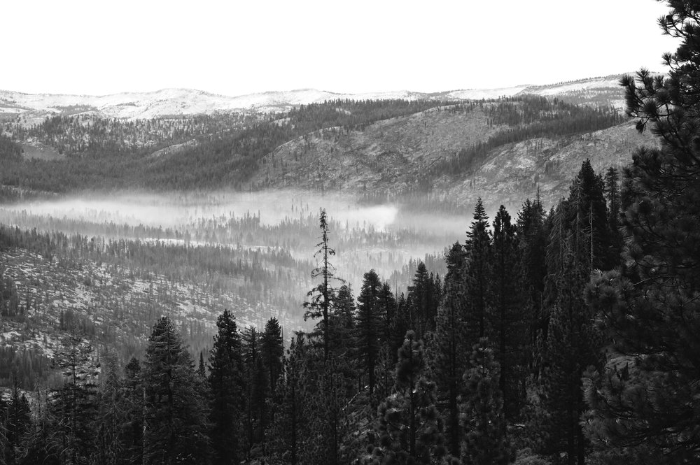 2017 11 10 Yosemite 1093 - Version 2.jpg