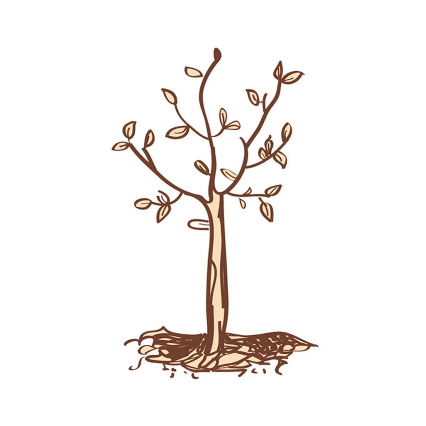 treevector.jpg