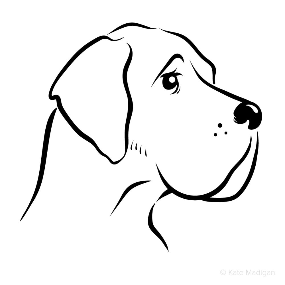 Black and white line drawing of a sad, melancholy Great Dane dog. Copyright Kate Madigan.