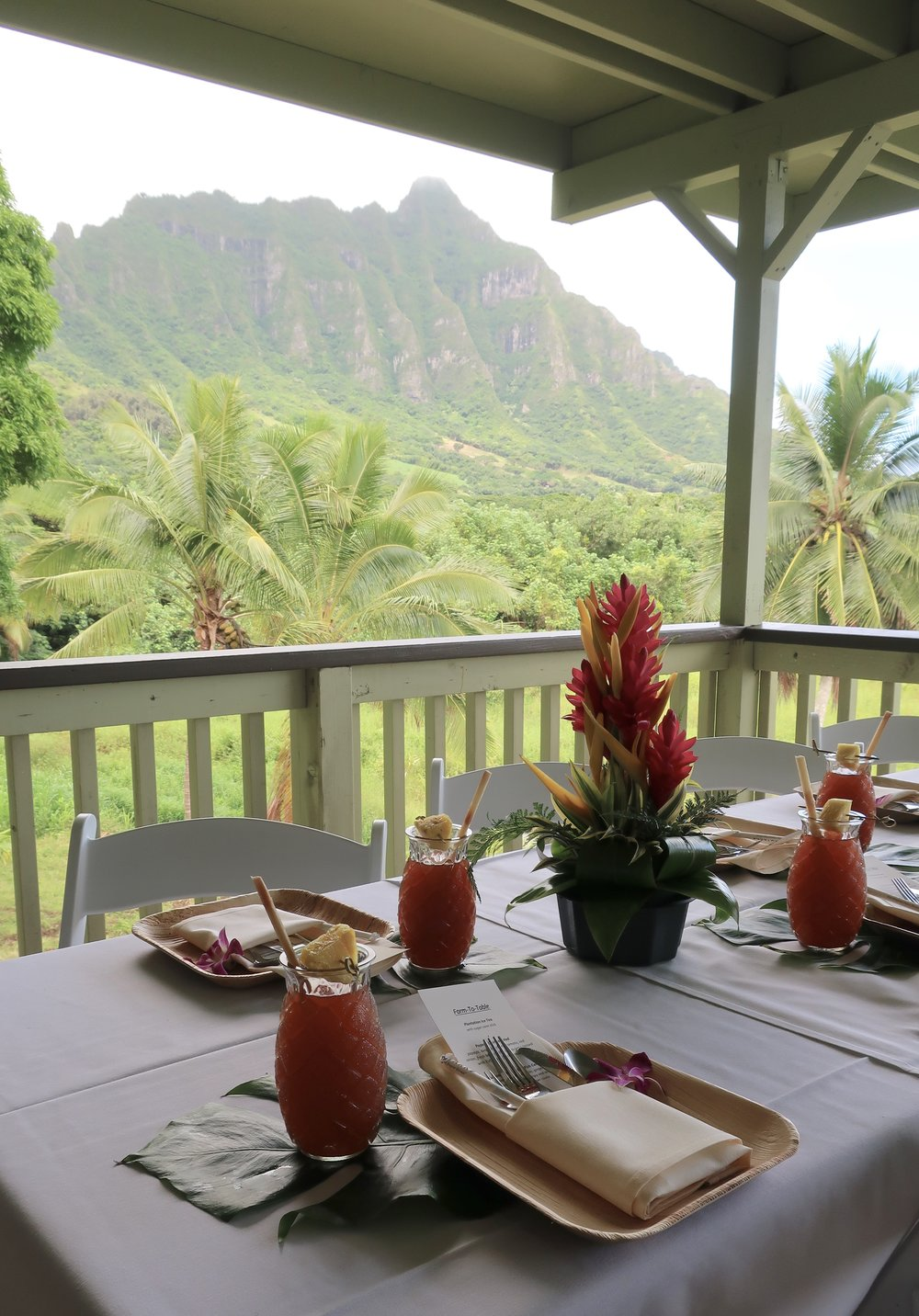 lunch at Hale'Aina Lanai overlooking the shrimp farms and ridges of kualoa Ranch's jurassic valley.