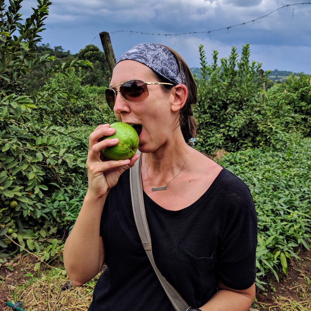 First bite of the apple guava