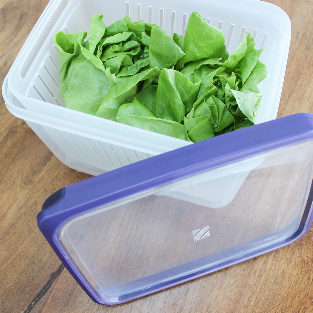 lettuce-2.jpg