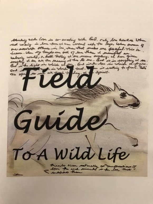 Field Guide - It's a mixture of original art inspired by the Wild Heart herd of horses, other beings on the farm, quotes, art journaling, writing, and inspiration for living a full life from your soul.It's a little piece of art-spiration, sized 8 1/2 by 11, printed and folded in black and white.Buy it here.