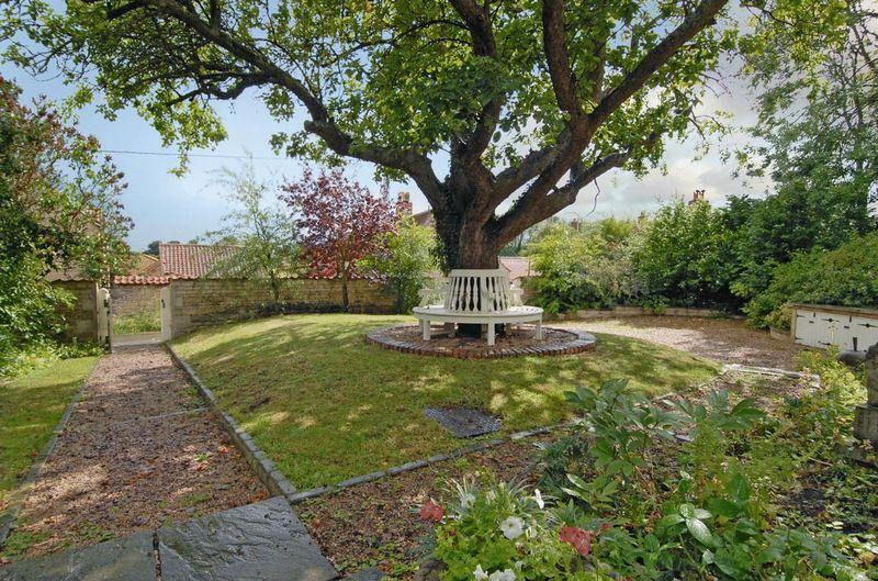 My Newton's Chapel garden