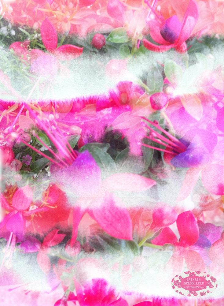Cathrin Gressieker_Flora Translucens2.jpg
