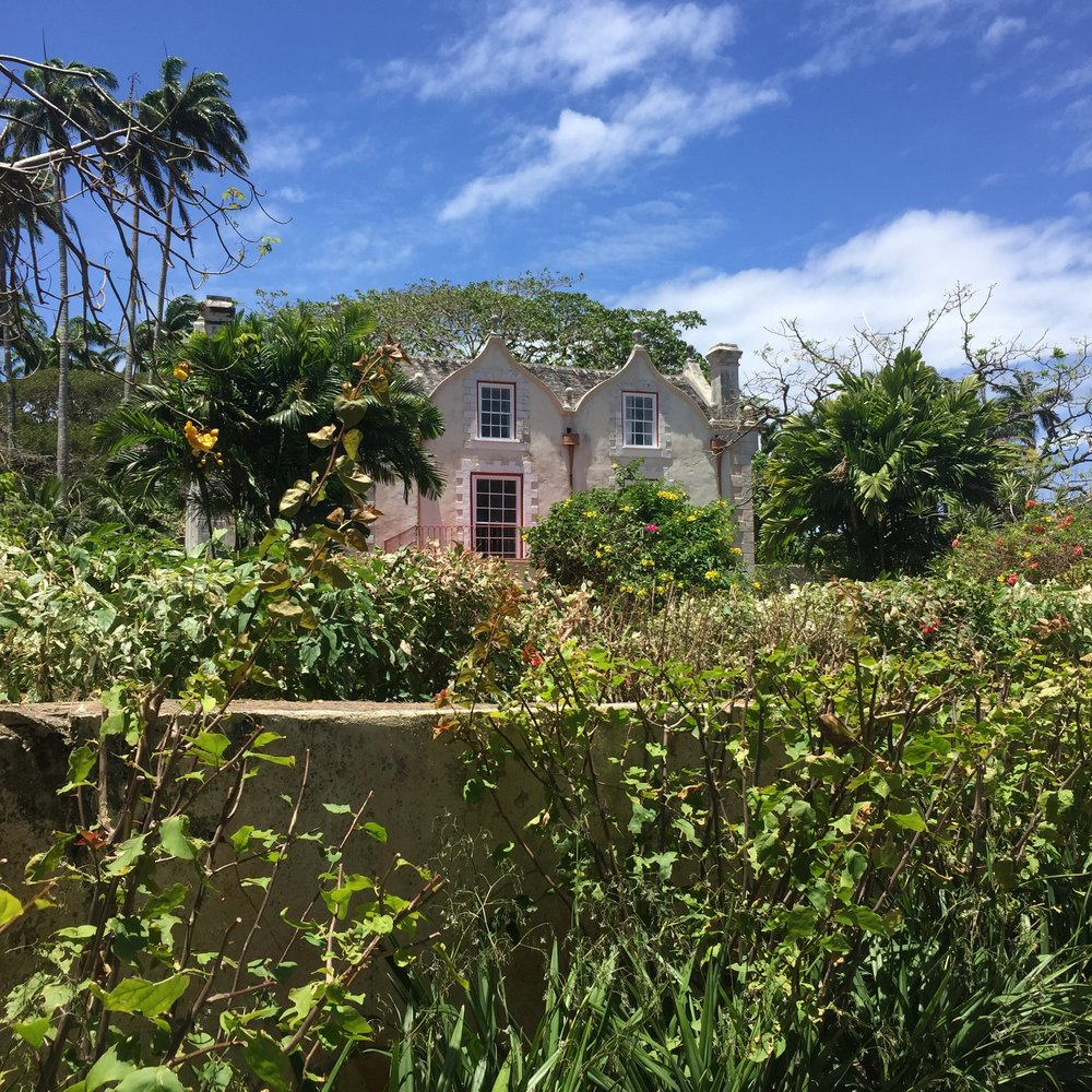 This 17th century Jacobean mansion was owned by a succession of British plantation owners over the past 350 years, including Benedict Cumberbatch's great, great uncle. I like history—even the sad, complicated parts (well, most all of history is sad and complicated). The bright side to this story is that it's now owned by a Bajan family who is committed to restoring the place and preserving its history.