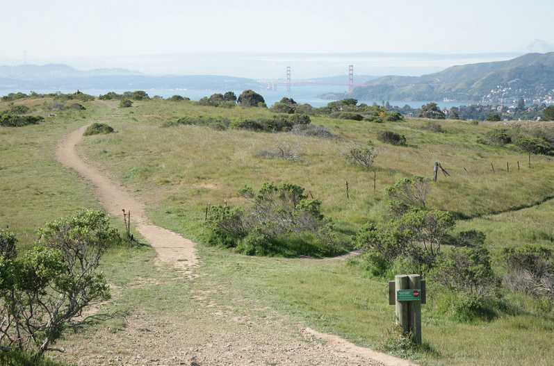Martha Trail & Golden Gate - Jocelyn Knight Photo.jpg