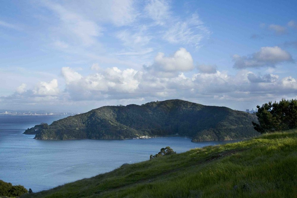 View towards Angel Island © Jocelyn Knight