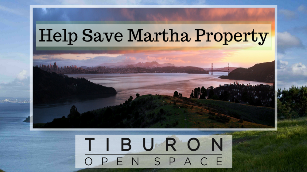 Help Save Martha Property