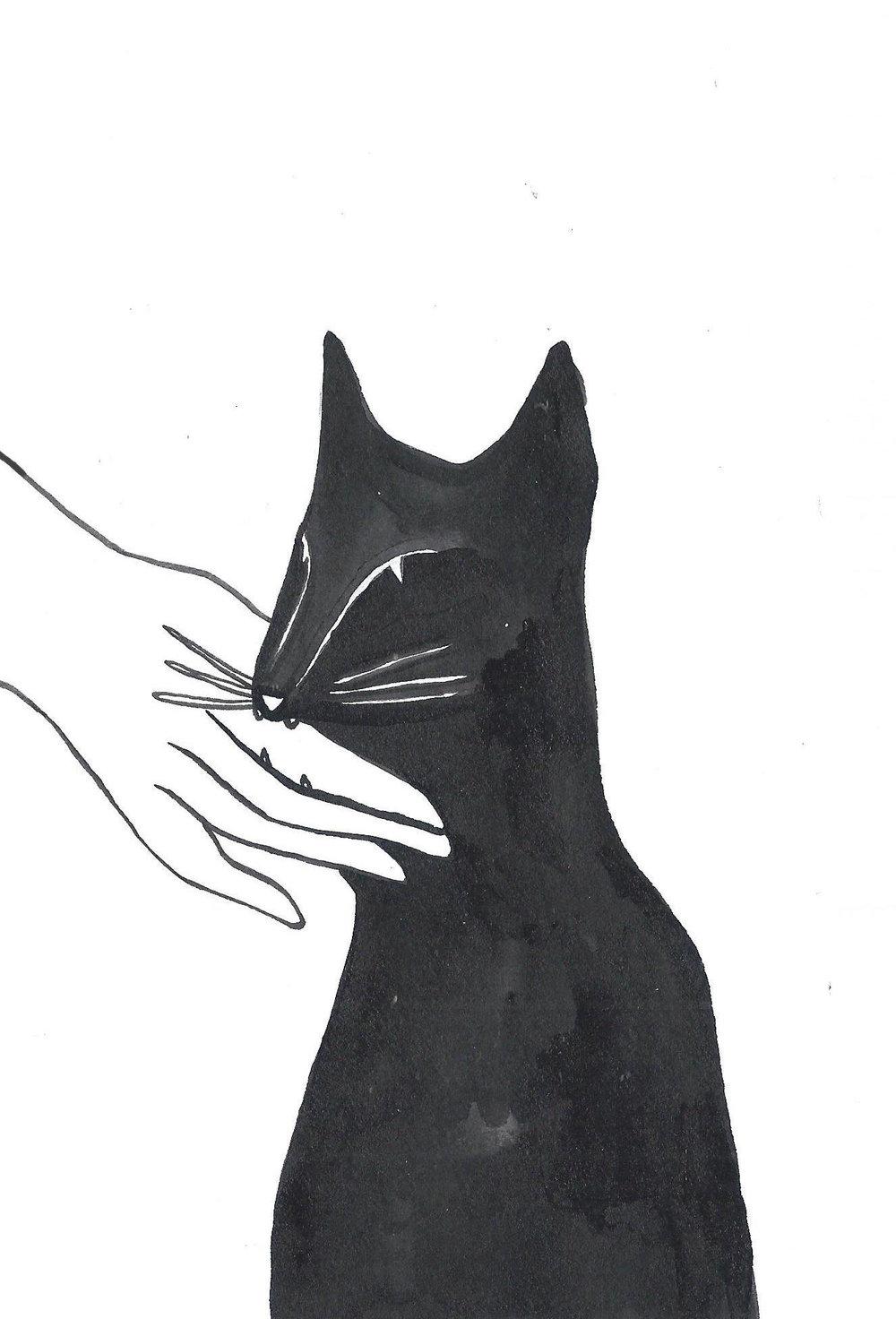 cat biting JPEG.jpg