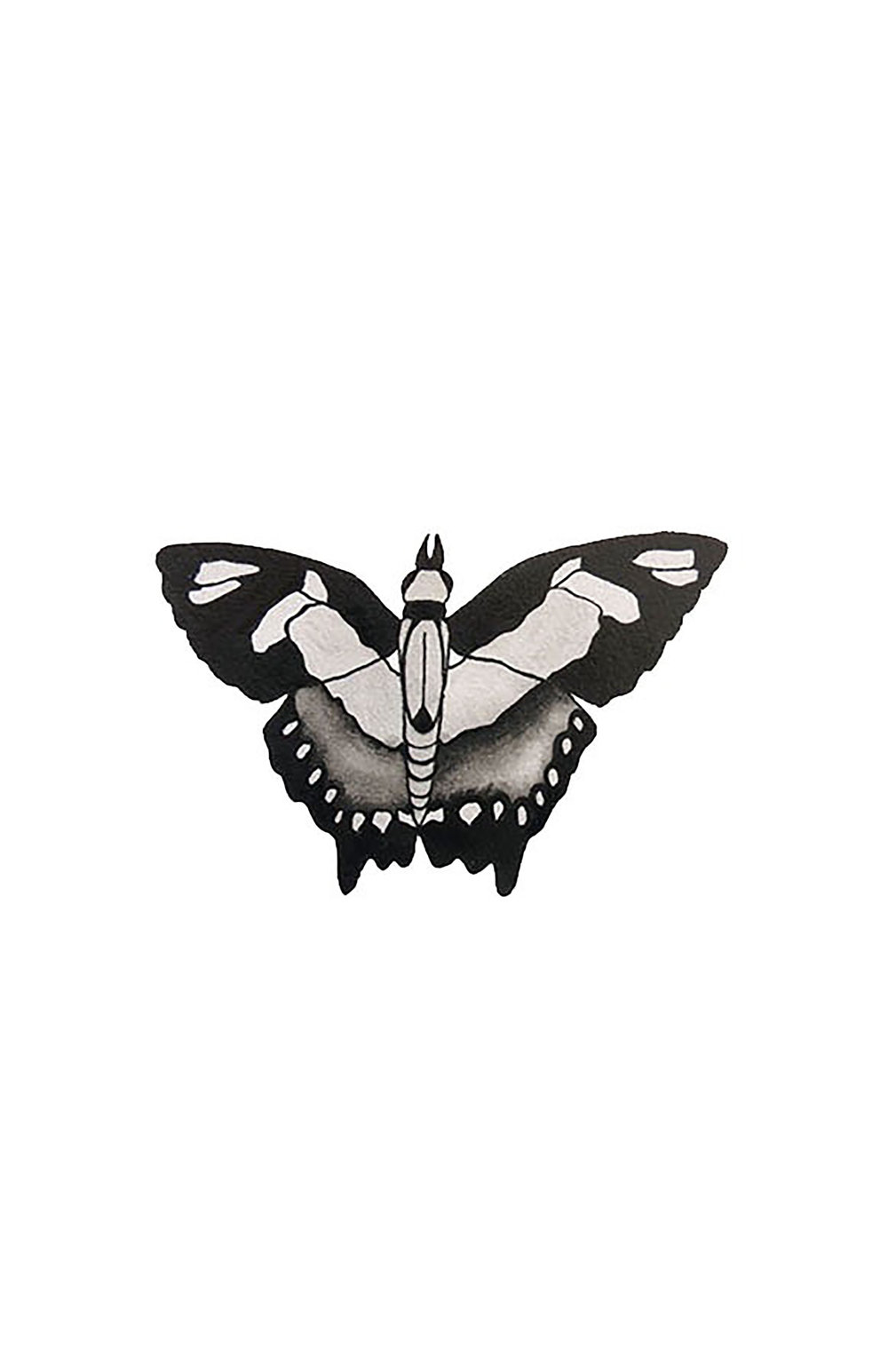 butterfly print 11x17.jpg