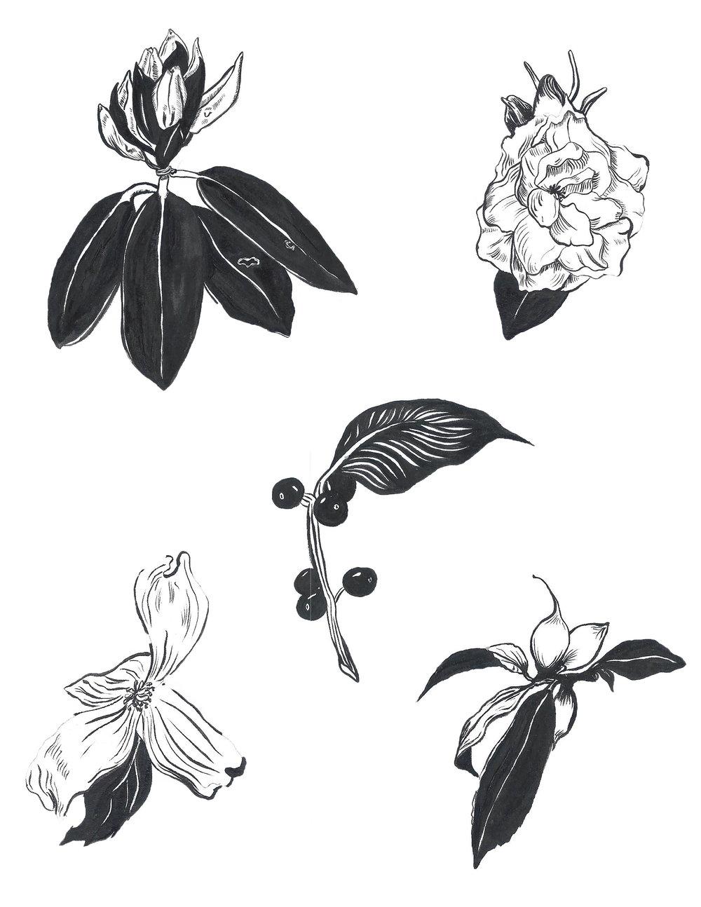 flower print 11x14.jpg