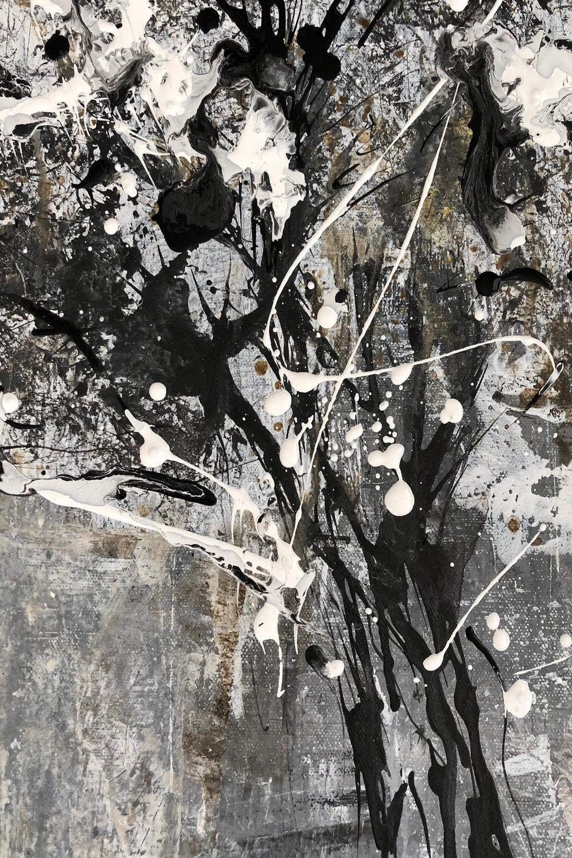 Birch, Black and White