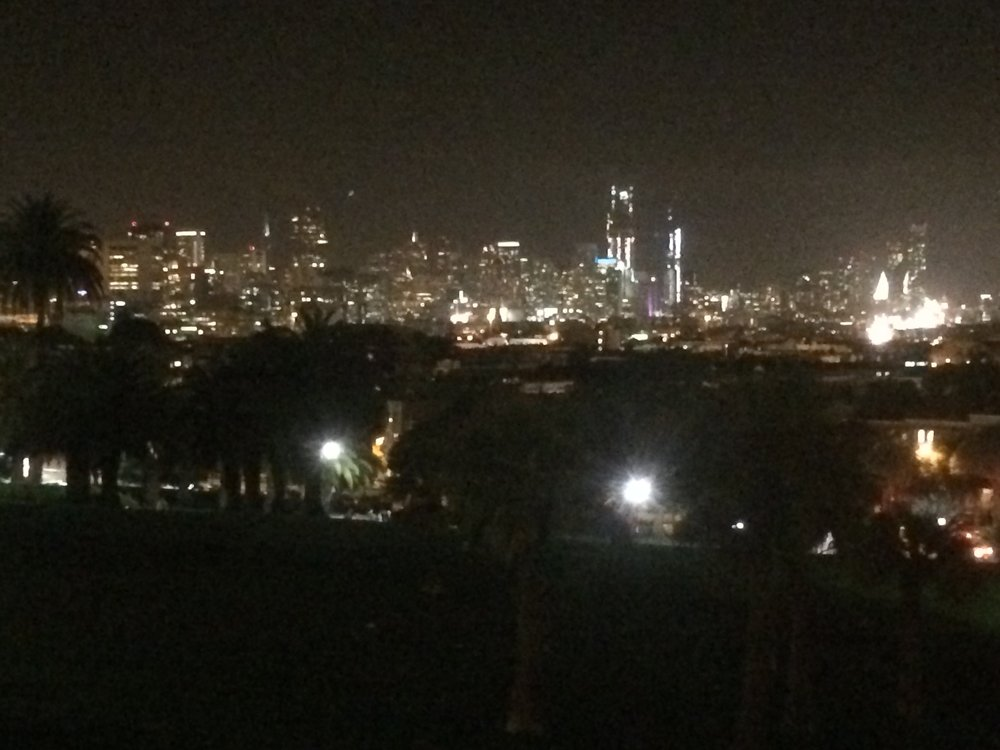 San Fran from the park