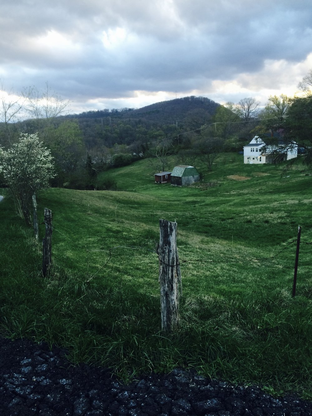 Appalachia is absolutely beautiful. This is someones backyard near the house show we played in Roanoke.