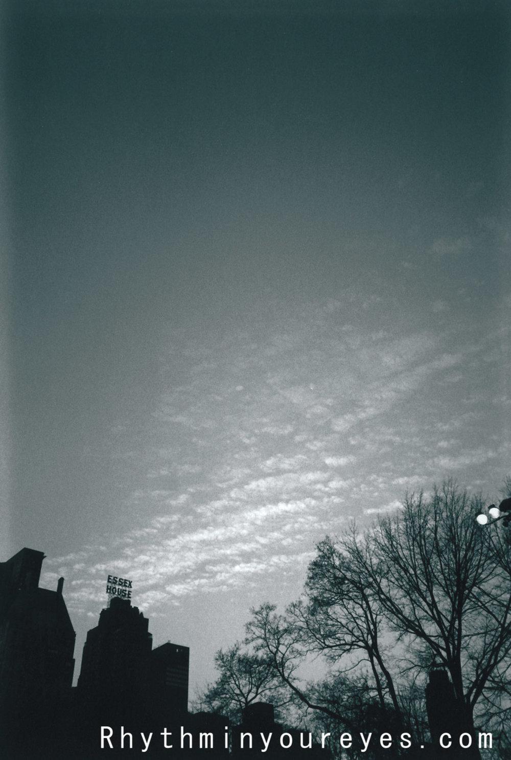 film-059.jpg
