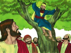 Zacchaeus 5.PNG