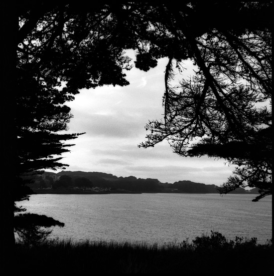 Black and White Photograph: Lake Merced, San Francisco, California, 2010