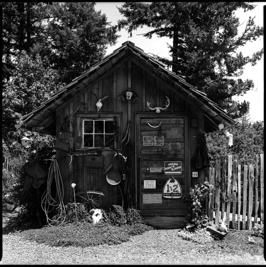 660075_11 black and white photograph cazadero california 2012