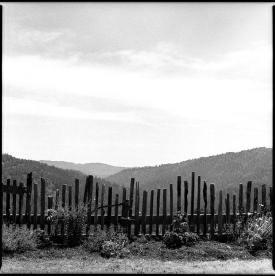 660075_12 black and white photograph cazadero california 2012