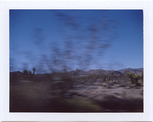 polaroid #p20130121_01 Joshua Tree, California