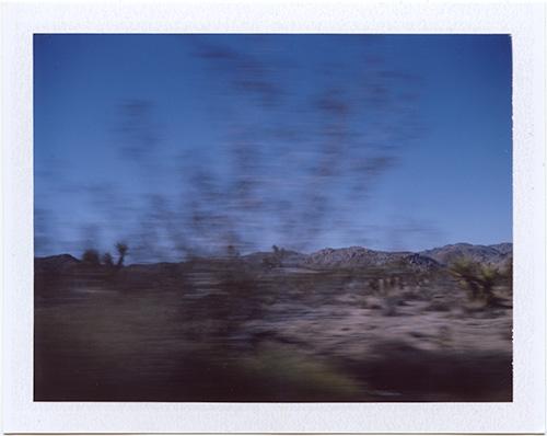 polaroid #p20130121_01 Joshua Tree, California