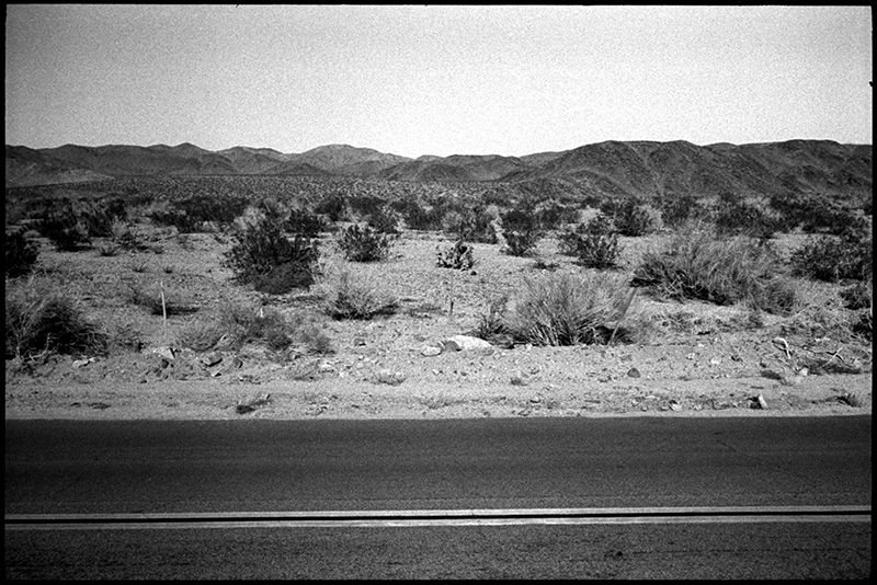 0249_24A Joshua Tree, California