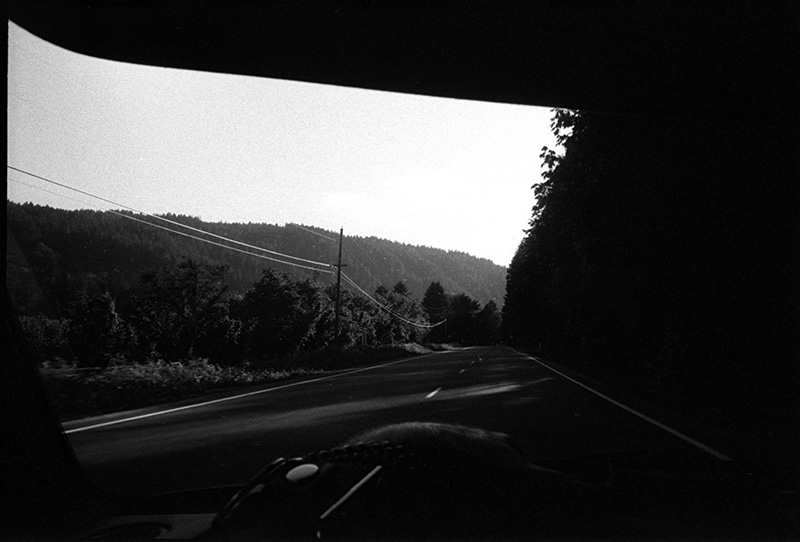 0257_29a Hwy 126, Outside Eugene, Oregon